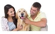 Soins naturels pour chiens, chats et chevaux